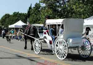 Carriage Ride at Los Alamos Old Days